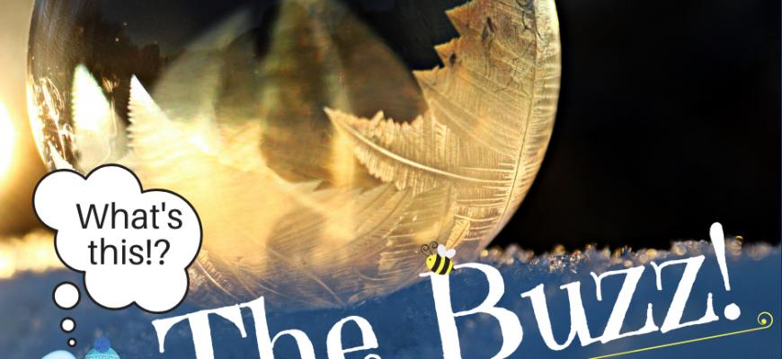The December Buzz | Part 2